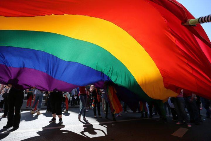 eşcinsellik genetik midir?